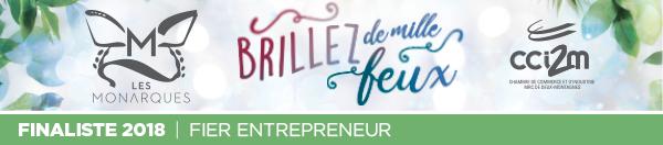 Catégorie Entrepreneur - Les Monarques